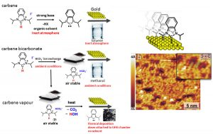 hughs research - Self-assembly of N-heterocyclic monolayers on gold and other transition metals